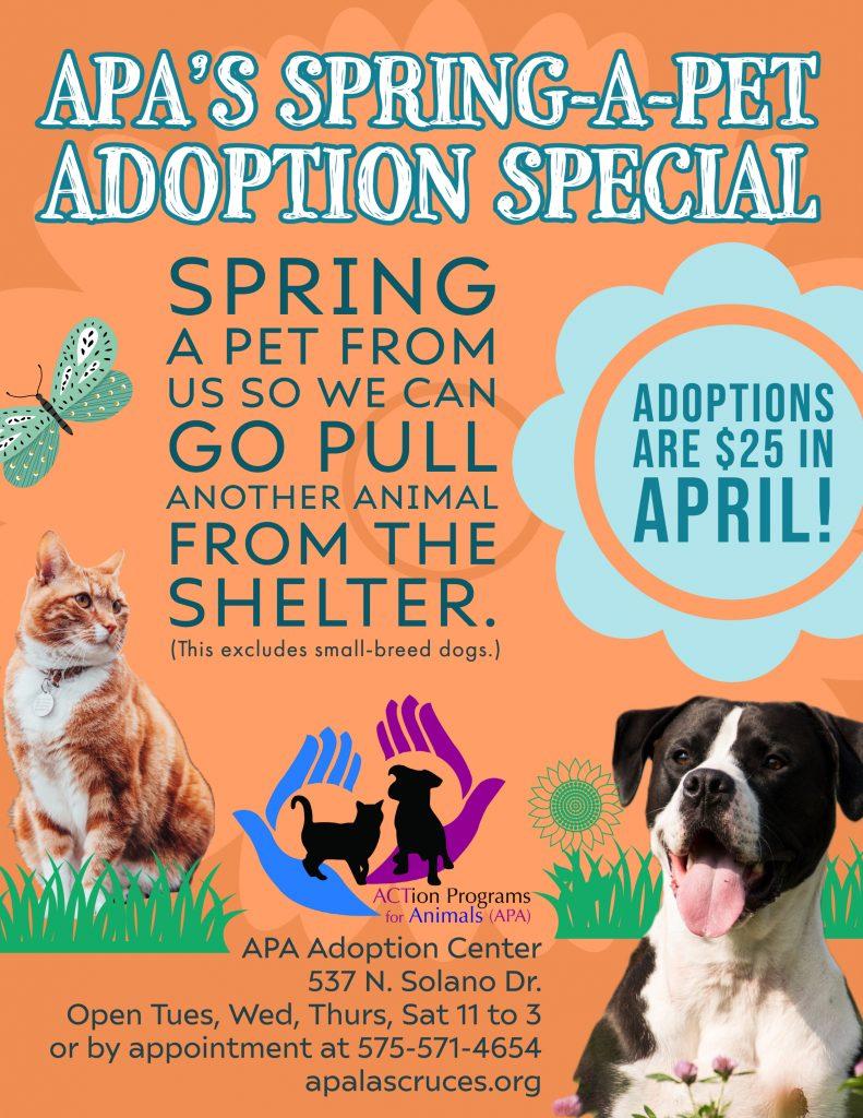 APA Spring Adoption Special